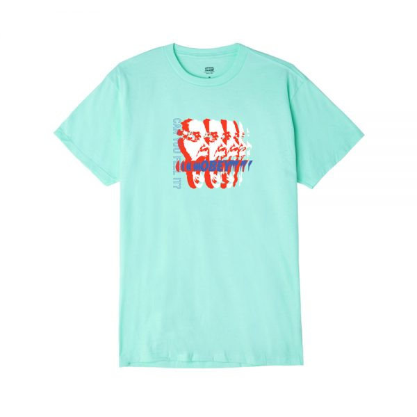 Obey-Can-you-feel-it-Tee-Celadon