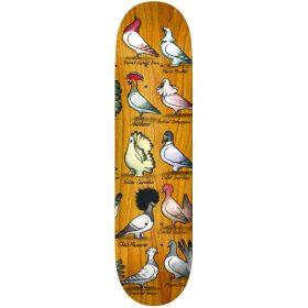 Anti Hero Show Pigeons Skateboard Deck Series